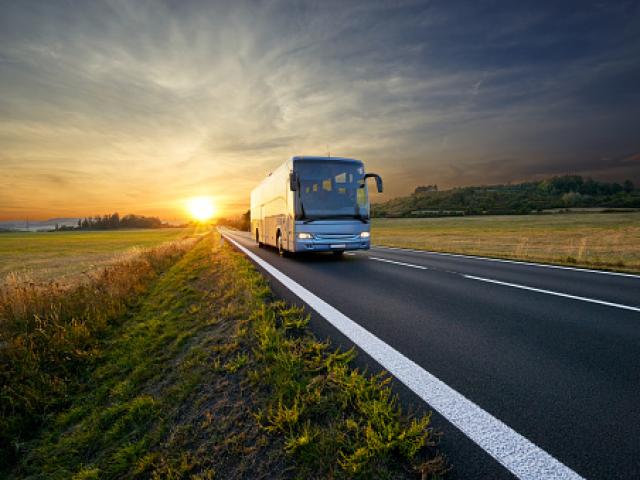 Turlara avtobus icaresi